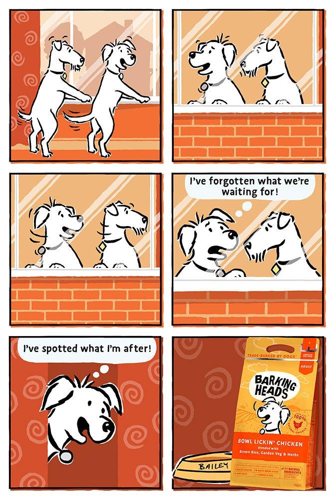 Barking Heads Cartoon Strips